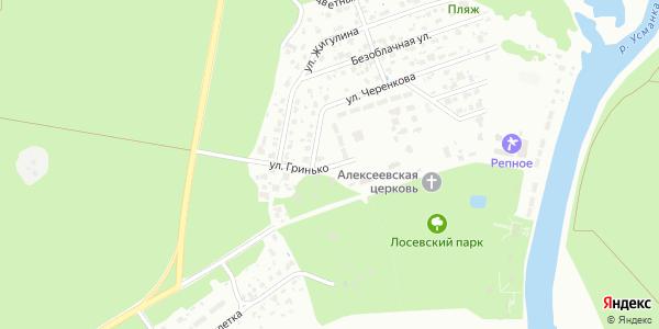 Гринько Улица в Воронеже
