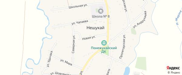 Новая улица на карте аула Нешукай с номерами домов