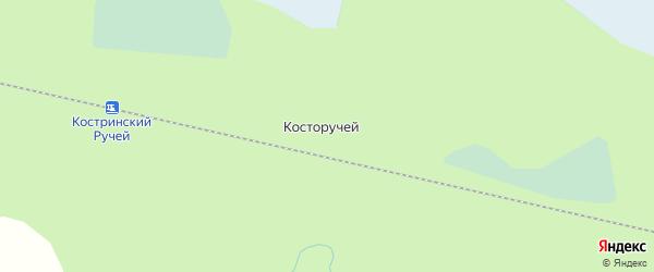 Карта железнодорожного разъезда Косторучья в Архангельской области с улицами и номерами домов