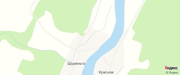 Карта деревни Шуреньги в Архангельской области с улицами и номерами домов