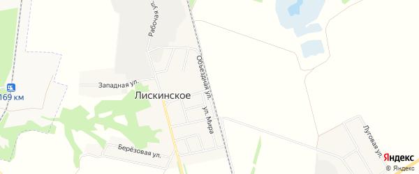 Карта территории Гк Сахалинца города Лисок в Воронежской области с улицами и номерами домов