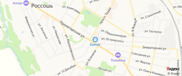 Карта территории ГК Автомобилиста города Россоши в Воронежской области с улицами и номерами домов