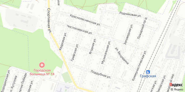Ягодная Улица в Воронеже