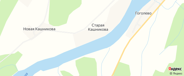 Карта деревни Старая Кашникова в Архангельской области с улицами и номерами домов