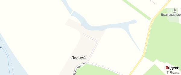 Луговая улица на карте Лесного поселка с номерами домов