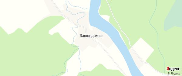 Карта деревни Зашондомья в Архангельской области с улицами и номерами домов