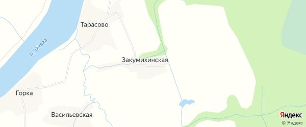 Карта Закумихинской деревни в Архангельской области с улицами и номерами домов