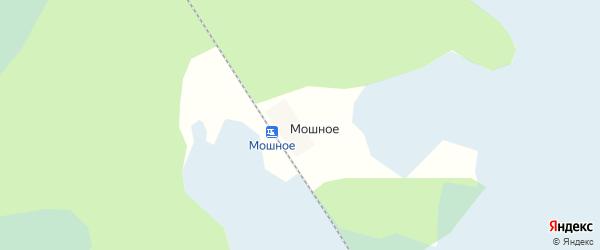 Карта поселка Мошного в Архангельской области с улицами и номерами домов