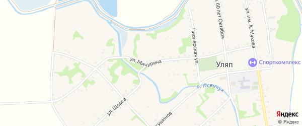 Улица Мичурина на карте аула Уляпа с номерами домов