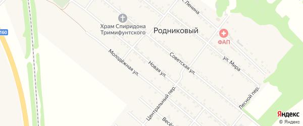 Новая улица на карте Родникового поселка с номерами домов