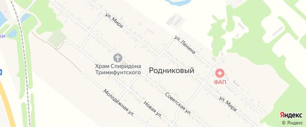 Северный переулок на карте Ханской станицы с номерами домов