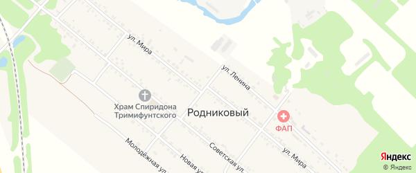 Улица Мира на карте Родникового поселка с номерами домов
