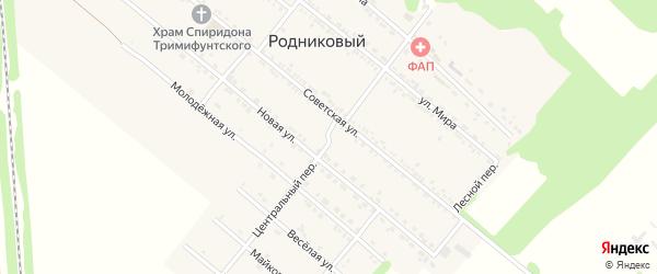 Центральный переулок на карте Родникового поселка с номерами домов