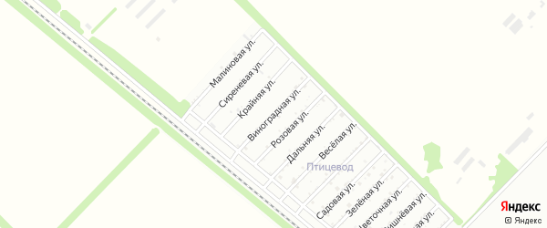 Виноградная улица на карте садового некоммерческого товарищества Красноречья с номерами домов