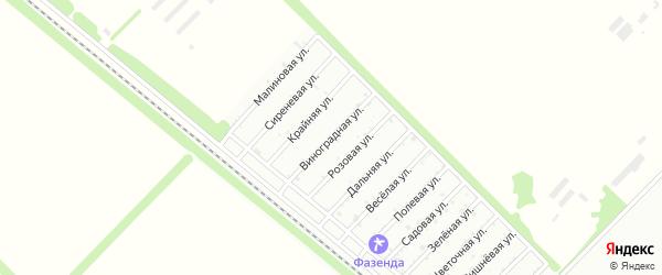 Виноградная улица на карте садового некоммерческого товарищества Севера с номерами домов