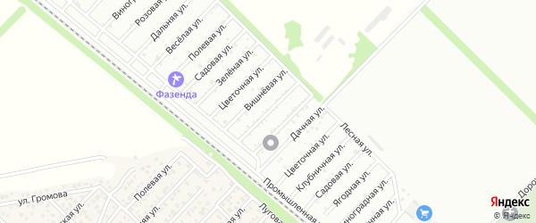 Абрикосовая улица на карте садового некоммерческого товарищества Джанатана с номерами домов