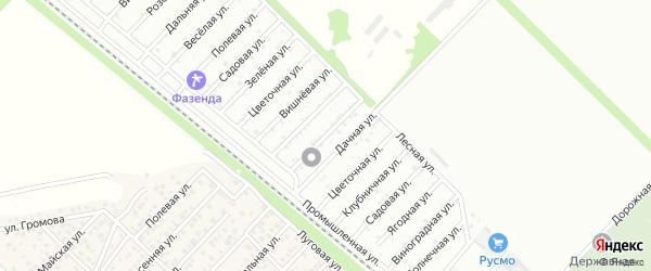 Васильковая улица на карте садового некоммерческого товарищества Лесовика с номерами домов