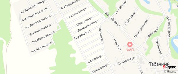 Цветочная улица на карте садового некоммерческого товарищества Керамика с номерами домов