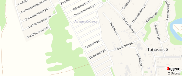 Коллективная улица на карте садового некоммерческого товарищества Бытовика с номерами домов
