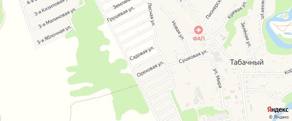 Ореховая улица на карте садового некоммерческого товарищества Радуги с номерами домов
