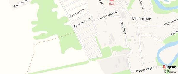 Сиреневая улица на карте садового некоммерческого товарищества Зари с номерами домов