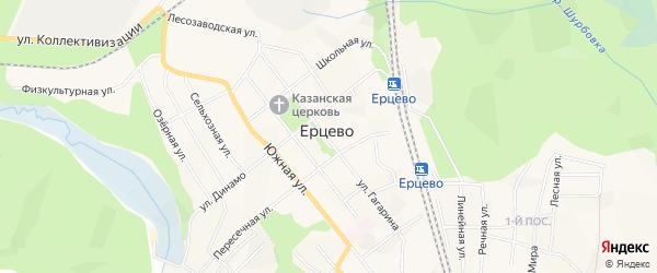 Карта поселка Ерцево в Архангельской области с улицами и номерами домов