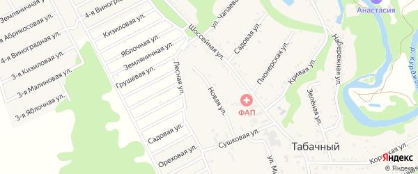 Лесная улица на карте Табачного поселка с номерами домов