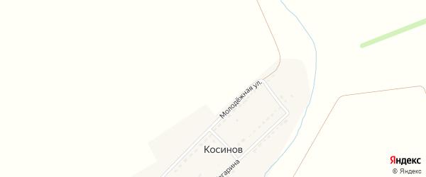Розовая улица на карте садового некоммерческого товарищества Авангарда с номерами домов