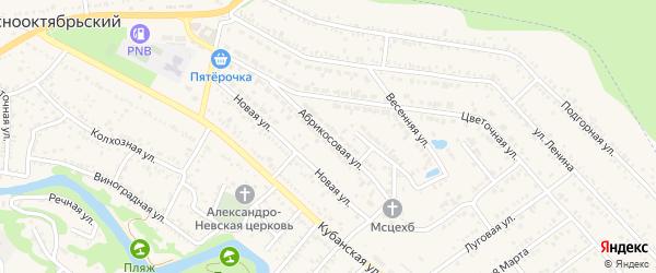 Абрикосовая улица на карте садового некоммерческого товарищества Птицевода с номерами домов