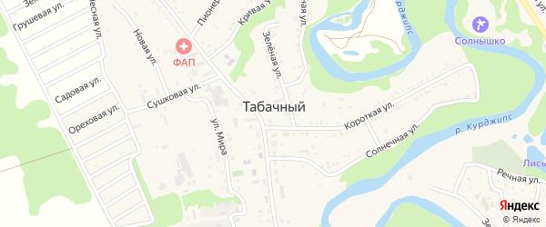 Коллективная 3-я улица на карте Табачного поселка с номерами домов