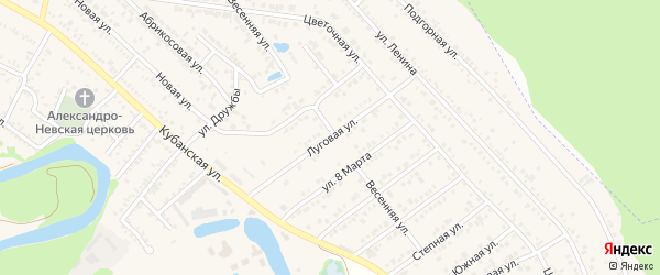 Луговая улица на карте садового некоммерческого товарищества Зари с номерами домов
