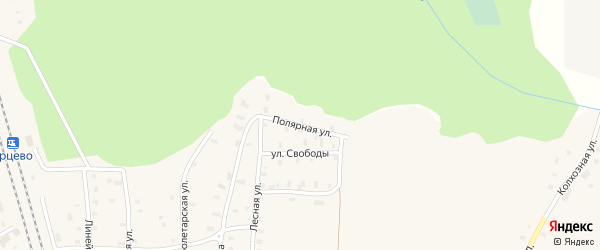Полярная улица на карте поселка Ерцево с номерами домов