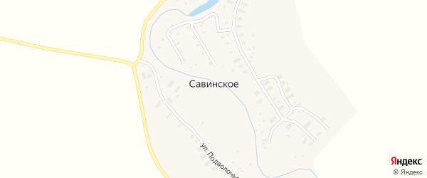 Улица Деревня Заозерье на карте Савинского села с номерами домов