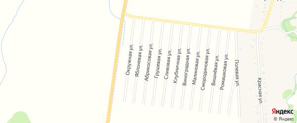 Абрикосовая улица на карте садового некоммерческого товарищества Радуги с номерами домов