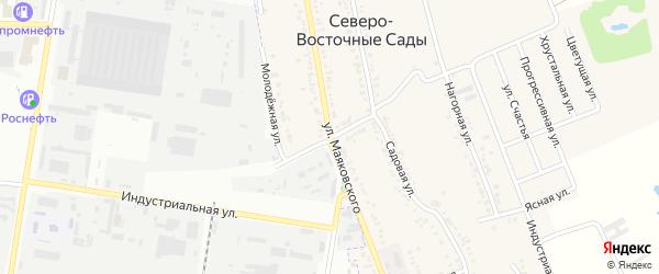 Улица Мичурина на карте хутора Северо-Восточные Садов с номерами домов