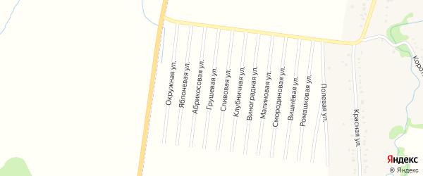 Грушевая улица на карте садового некоммерческого товарищества Автомобилиста с номерами домов