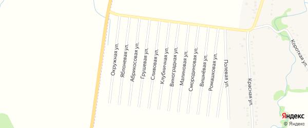 Сливовая улица на карте садового некоммерческого товарищества Веры с номерами домов