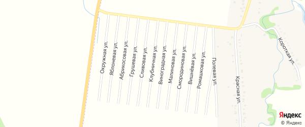 Клубничная улица на карте садового некоммерческого товарищества Черемухи с номерами домов