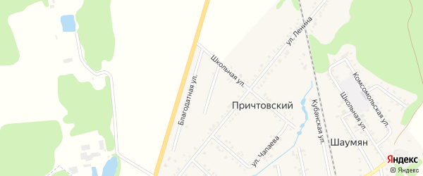 Улица 50-летия Победы на карте Причтовского хутора с номерами домов