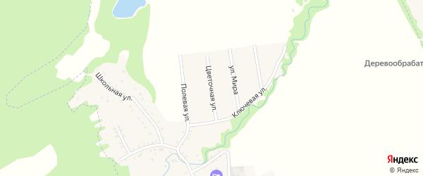 Цветочная улица на карте Цветочного поселка с номерами домов