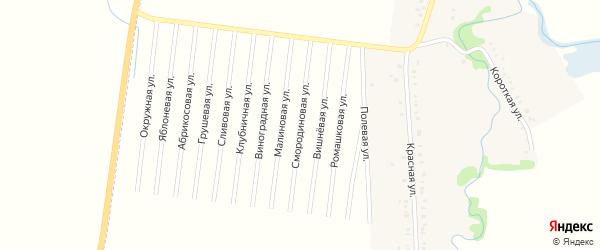 Смородиновая улица на карте садового некоммерческого товарищества Малиновки с номерами домов