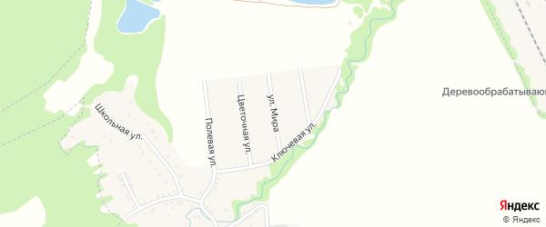Улица Мира на карте Цветочного поселка с номерами домов