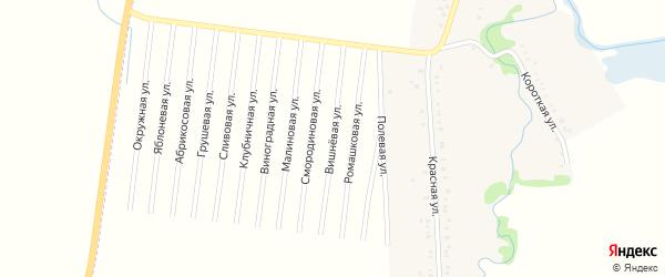 Вишневая улица на карте садового некоммерческого товарищества Черемухи с номерами домов