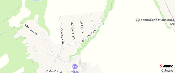 Ключевая улица на карте Цветочного поселка с номерами домов