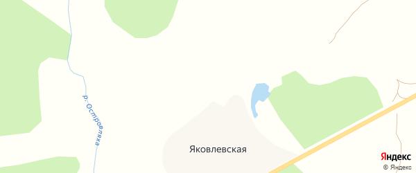 Лесная улица на карте Яковлевской деревни с номерами домов