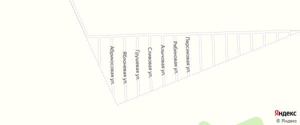 Сливовая улица на карте садового некоммерческого товарищества Урожая с номерами домов