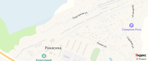 Двинская улица на карте деревни Рикасихи с номерами домов