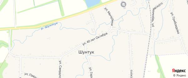 Улица 40 лет Октября на карте хутора Шунтука с номерами домов
