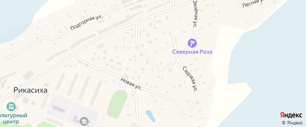 Садовая улица на карте деревни Рикасихи с номерами домов