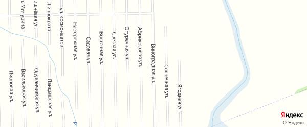 Виноградная улица на карте садового некоммерческого товарищества Совета с номерами домов